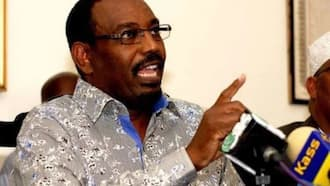 Ruto Atamuonyesha Kivumbi Raila 2022, Aliyekuwa Naibu Spika wa Bunge Farah Maalim Asema