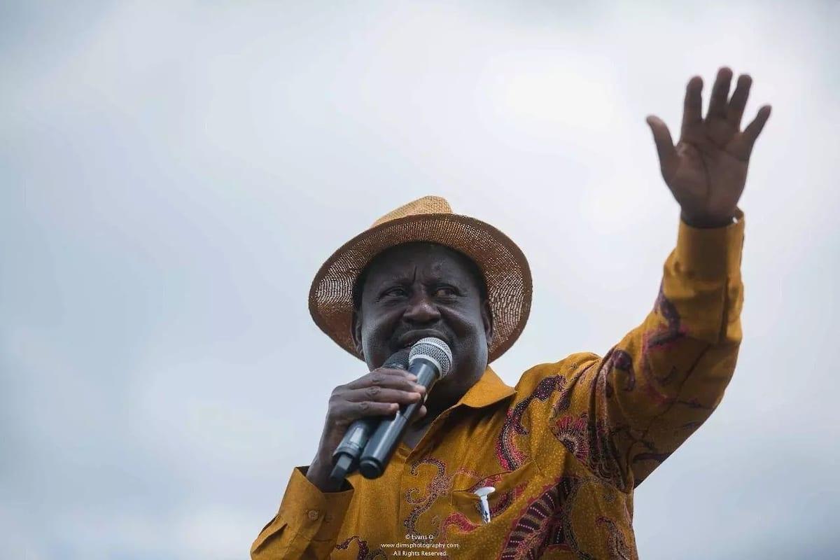 Raila Odinga right candidate for peace ambassador - Jubilee MP