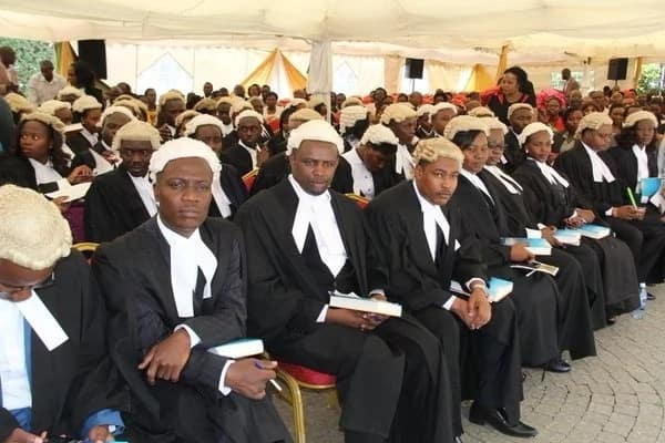Kenya School of Law fee structure, contacts, official website, and location