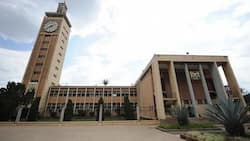 2 MPs File Petition Against Degree Requirement, Claim COVID-19 Disrupted Learning