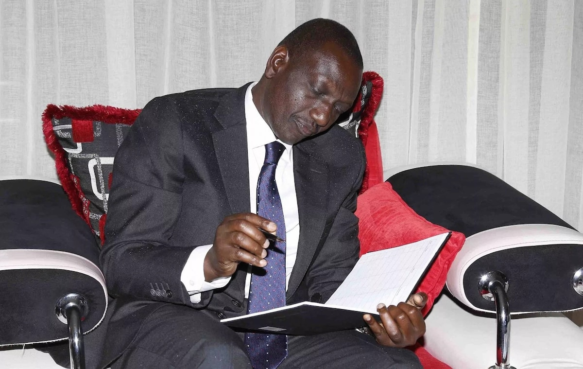 Raila Odinga junior mocks Ruto after aborted meeting with former president