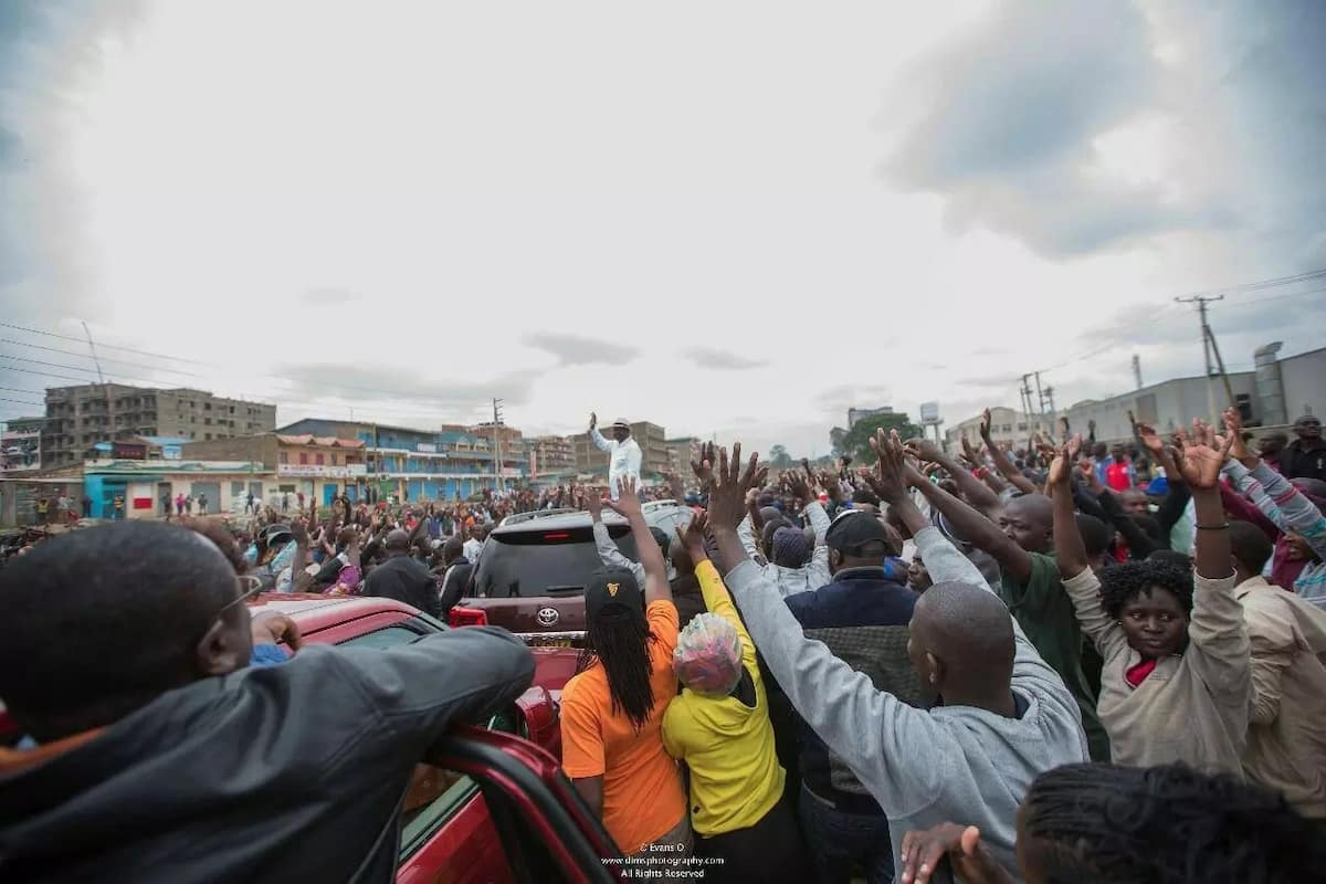 From peace to pieces. Ballot to bullet, we shall pay the price - David Ndii