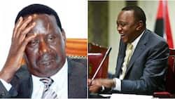 Don't follow Uhuru like a HOUSEFLY, Raila warned by former DISCIPLE