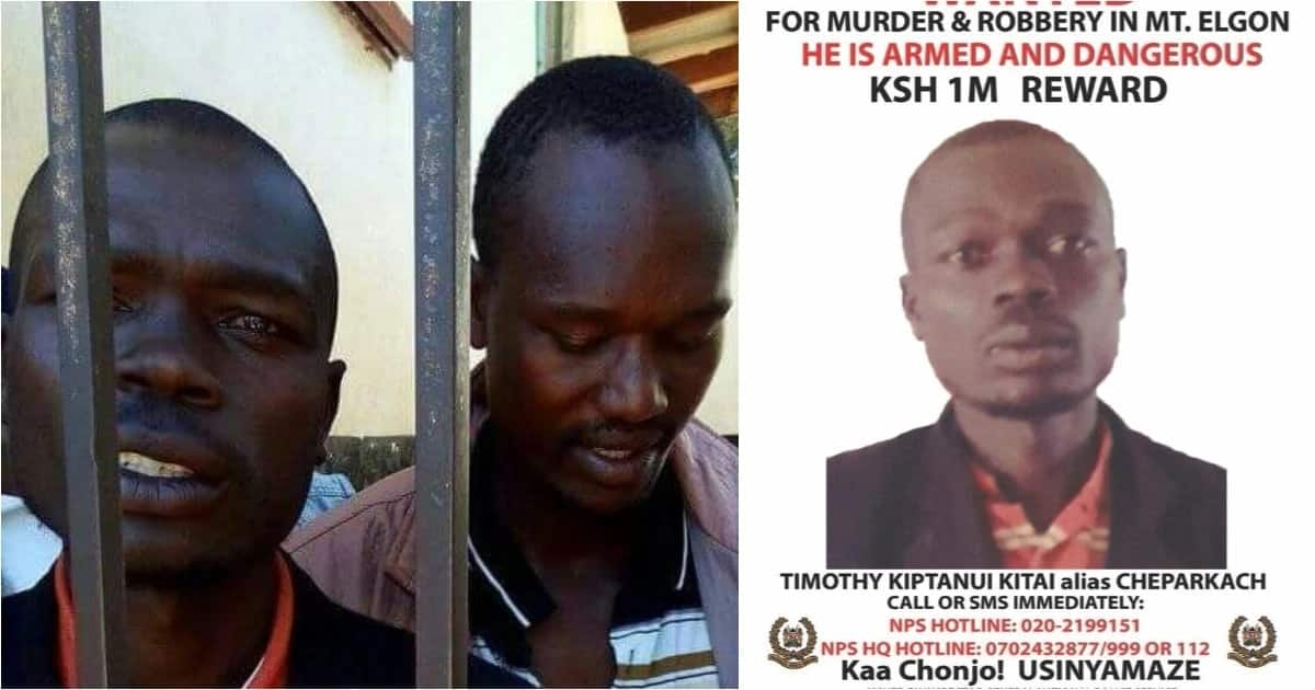 Suspected gang leader behind Mt Elgon chaos, killings finally arrested