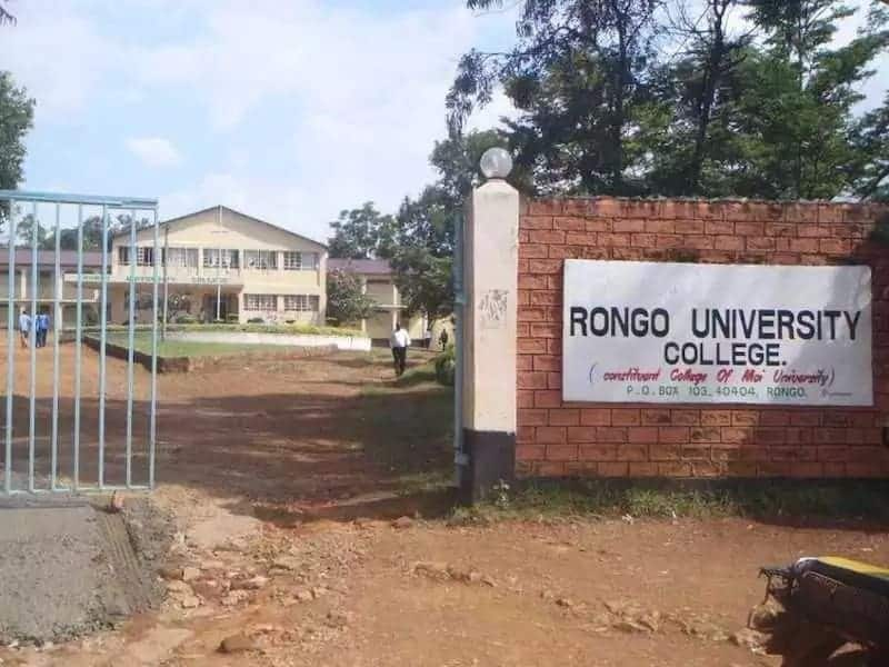Rongo university college fee structure Fee structure of rongo university college Rongo university college fee structure 2018