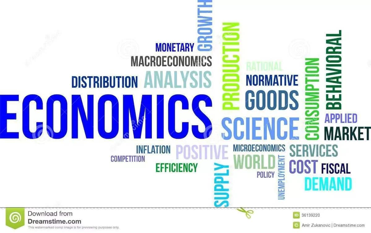The Importance of Economics in Our Lives