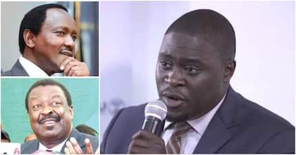 Jubilee senator tells off NASA co-principals for demanding equal treatment with Raila