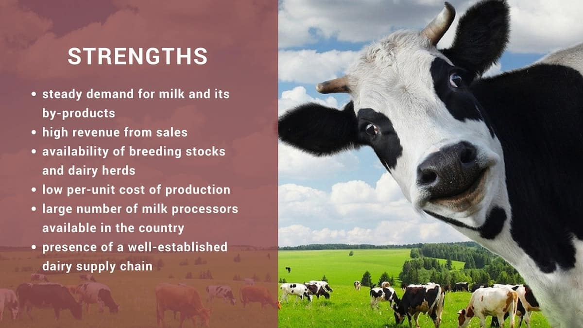 How to start successful dairy farming in Kenya