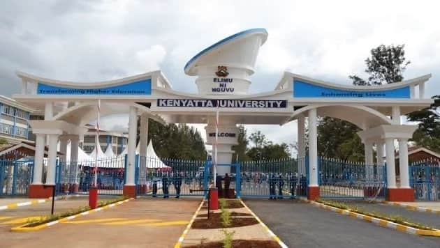 List of all new Vice Chancellors posted to six universities which have been operating with acting VCs