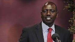 William Ruto is a chocolate soldier in GEMA, Mutahi Ngunyi says Kikuyus will back Raila