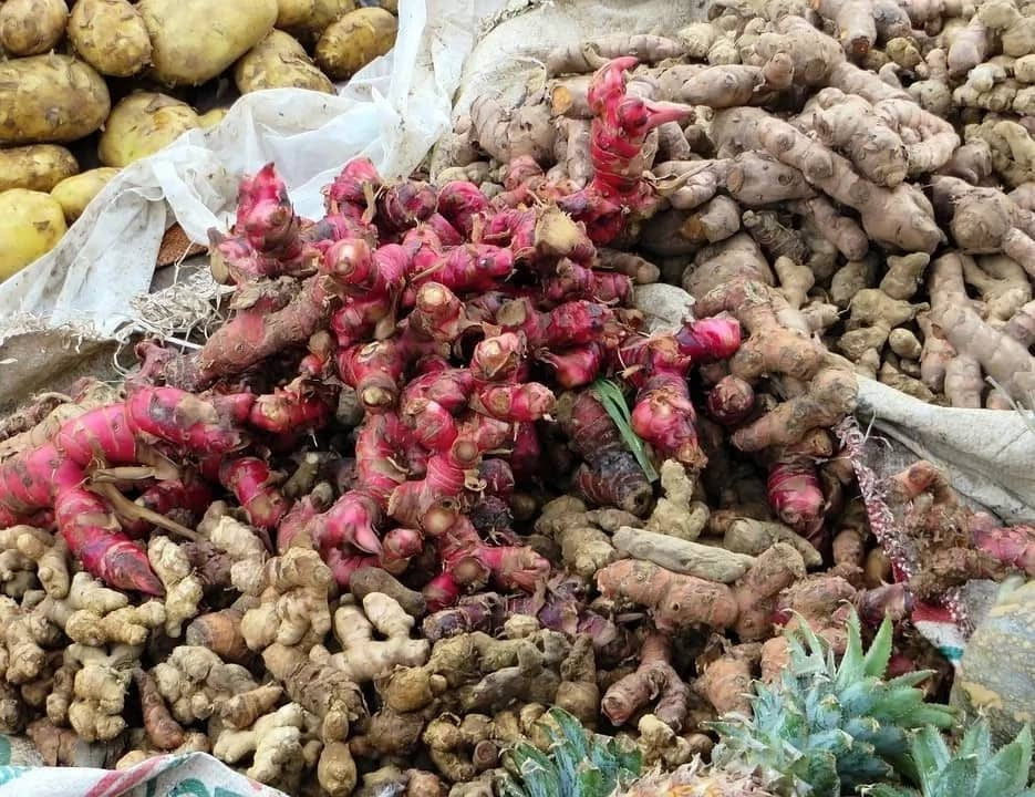 Red ginger health benefits