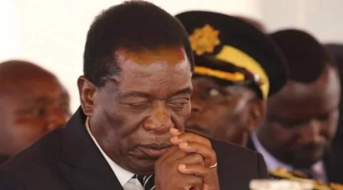 Zimbabwe's Vice President was pictured praying with one eye open on the Mugabes. Photo: NewZimbabwe.com