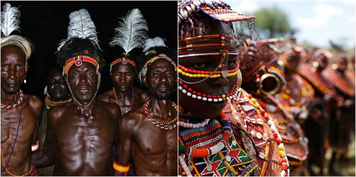 Tribes in Kenya How many tribes in Kenya Number of tribes in Kenya