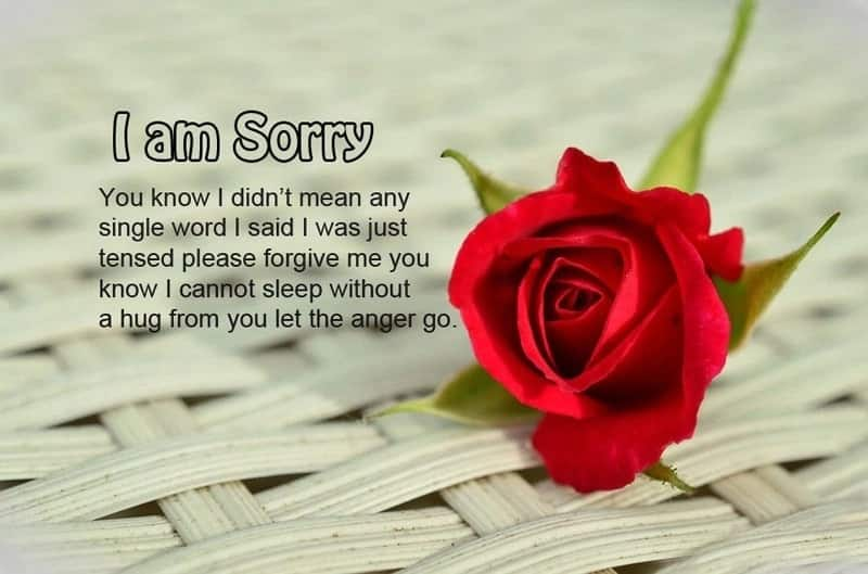 I'm sorry picture messages Best sorry messages ever Sweet am sorry messages