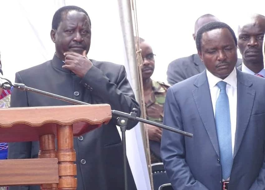 Raila-Kalonzo's controversial swearing in plan endorsed by diaspora supporters