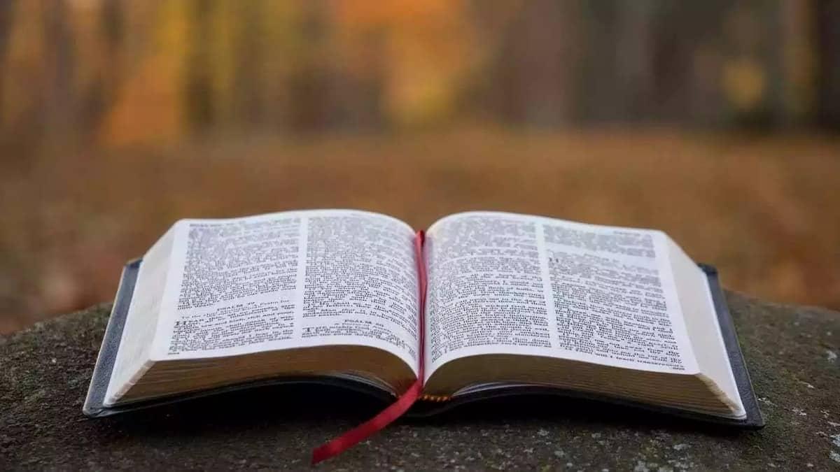 Bible scriptures on healing Scriptures on healing 31 scriptures on healing