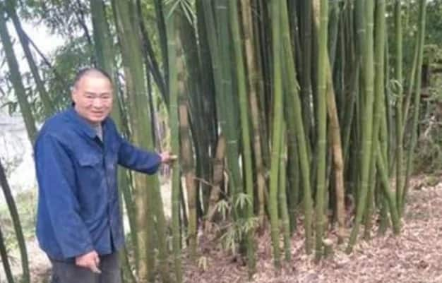 Father ties girl to bamboo canes and abandons her in GRAVEYARD at midnight (photos)