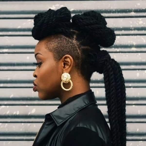african braids hairstyles pictures