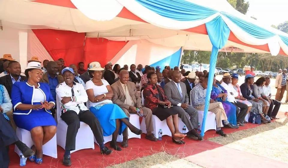 Kalonzo hands Uhuru last hand at dialogue as NASA builds momentum on inauguration
