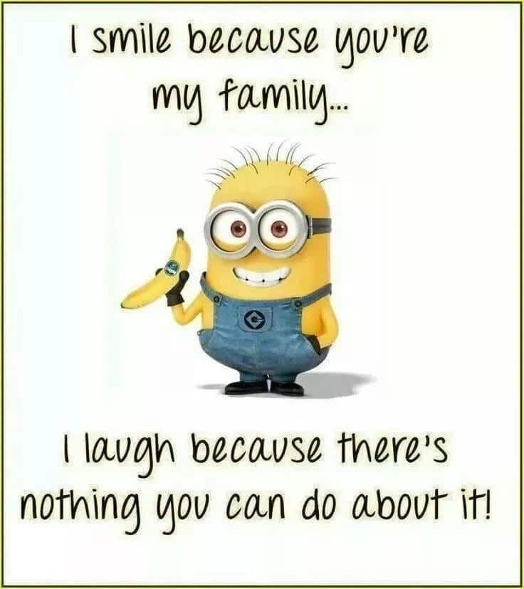 Funny family love quotes and sayings What is family love quotes Love for family quotes