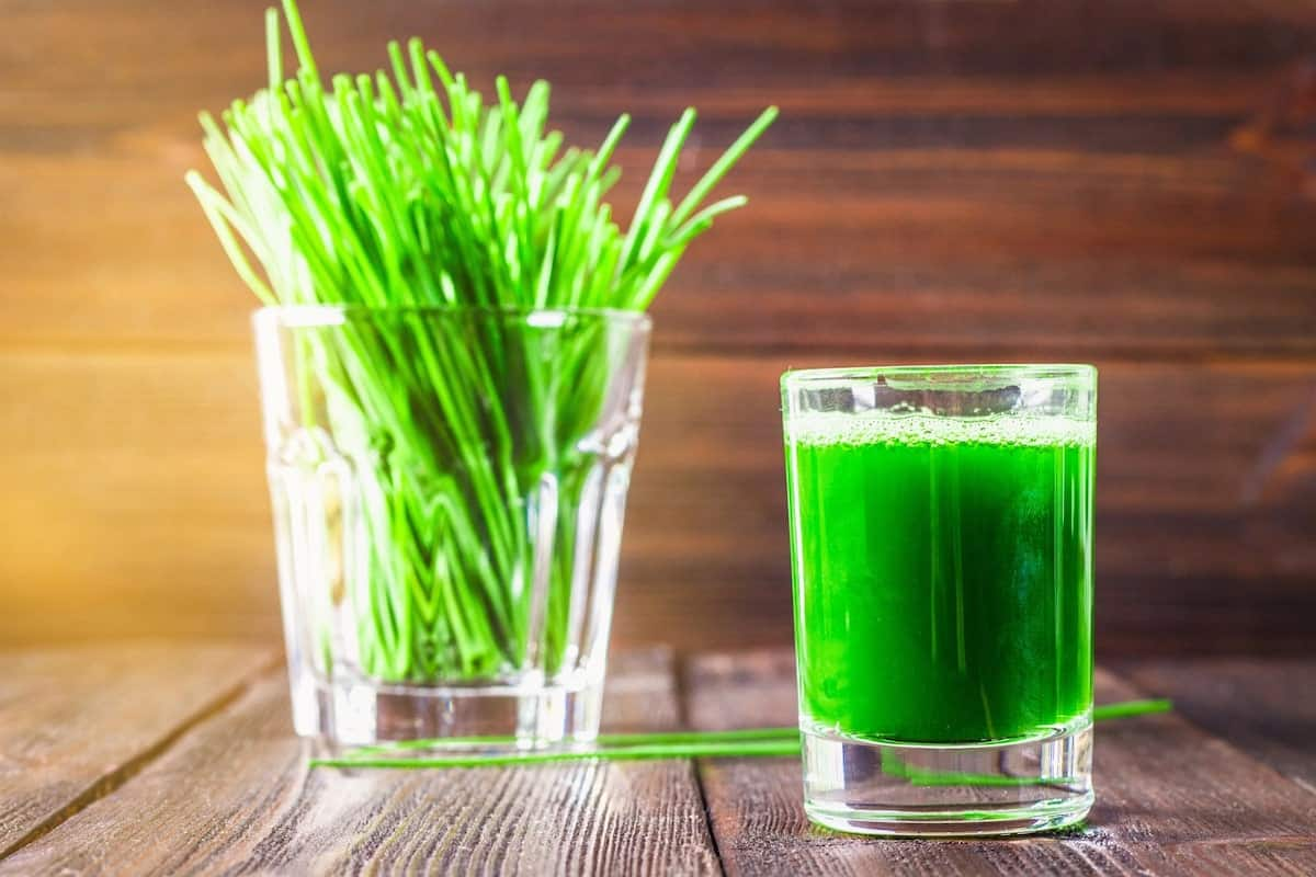 benefits of wheatgrass, wheatgrass powder benefits, wheatgrass juice
