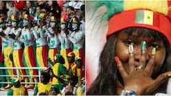 Senegal fans go the extra mile and clean up stadium after victory against Poland in Russia