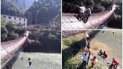 Tourists left suspended on collapsing bridge, fighting for dear life, after ignoring sign telling them not to cross