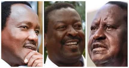 Wanasiasa wa ODM, Jubilee na Amani wamkaidi Raila kuhusu Kalonzo Musyoka 2022