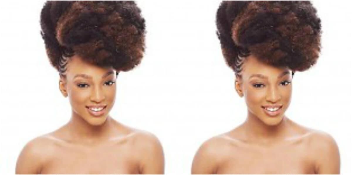 Afro kinky braiding hair