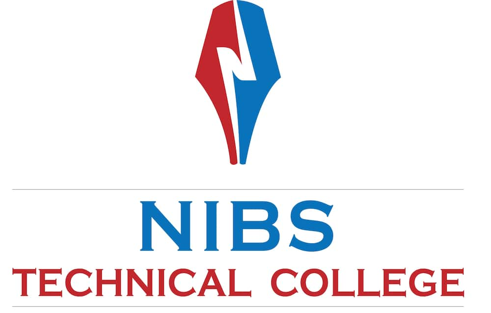 NIBS college fee structure and courses offered