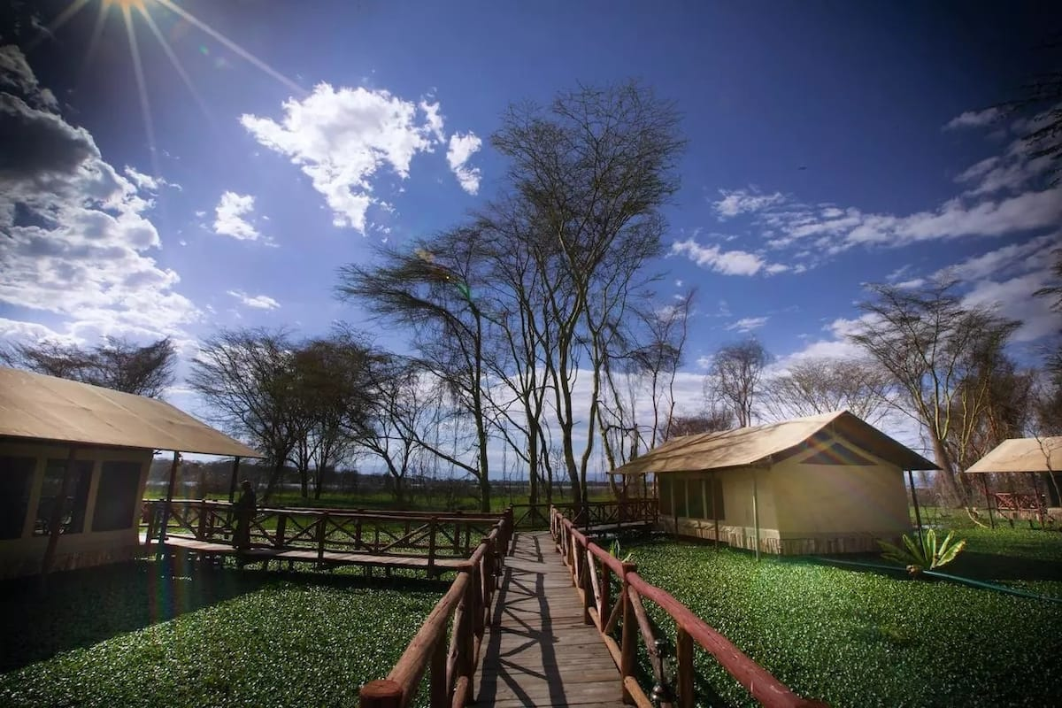 hotels in Naivasha town