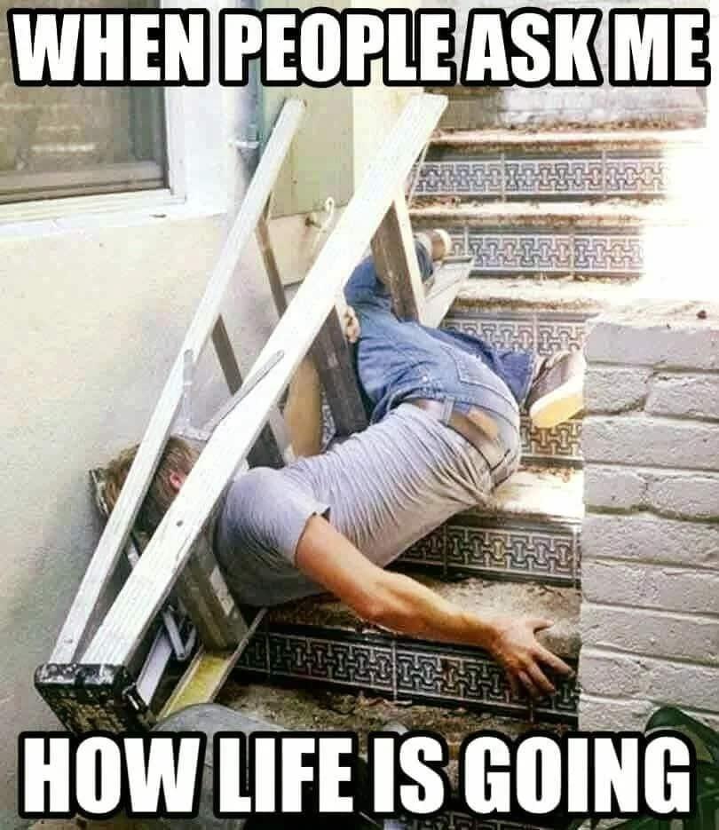 funny memes about life tuko co ke