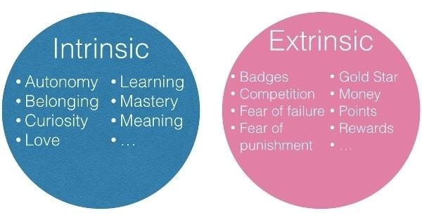 define motivation, extrinsic motivation, types of motivation, forms of motivation