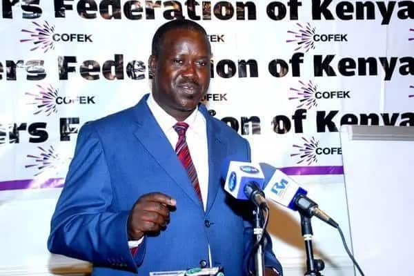 Cofek boss denies knowledge of mysterious ex-employee who claimed he mistreated her