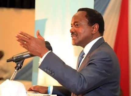 Politics has just begun, we won't stop - Kalonzo