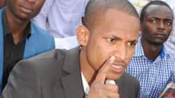 Babu Owino adai polisi wanataka kumkamata kwa kumshirikisha silaha na dawa za kulevya