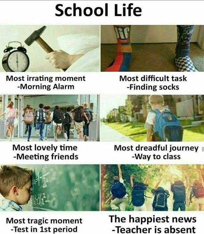 Funny Memes About School Tuko Co Ke
