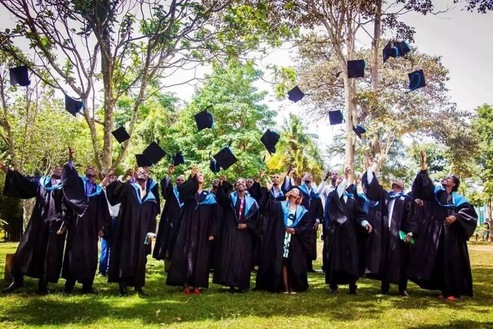 Top 10 HIGHEST Paying Jobs in Kenya ▷ Tuko co ke
