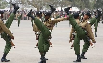 Kenya Police finds wit in 'D-material' insult in a hilarious Twitter thread