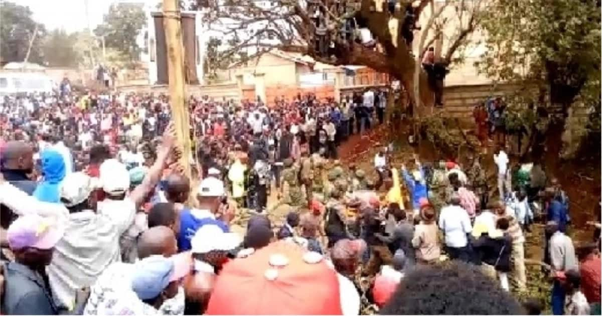 Scores rushed to hospital after falling off a tree during Madaraka Day celebrations in Meru