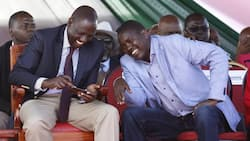 Give us a break from politics, we have important business to do- DP William Ruto