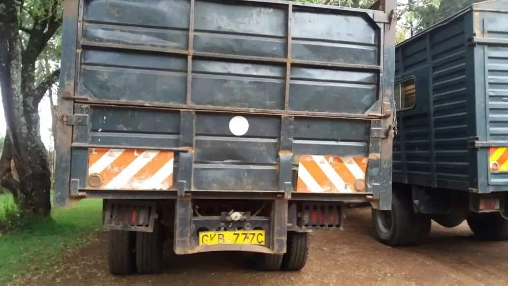 Government vehicle caught ferrying timber despite government ban on tree-cutting