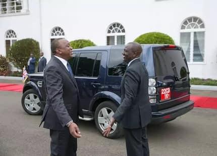 Uhuru, Ruto wanunua mbuzi 1,400 Kajiado kwa KSh 10 milioni