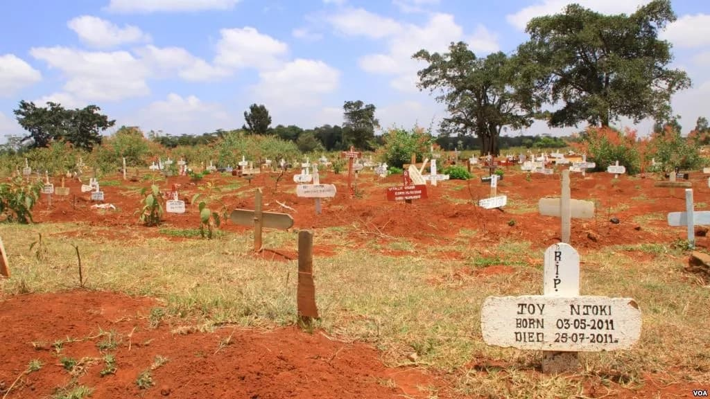 Mt Kenya to play host to Kenya's first KSh 800 million private grave yard for the elite rich