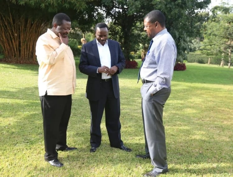 Wiper deputy leader reveals why Kalonzo, Weta and Mudavadi skipped Raila swearing-in
