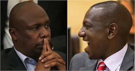 Jubilee MP says Gideon Moi is political toddler compared to DP Ruto