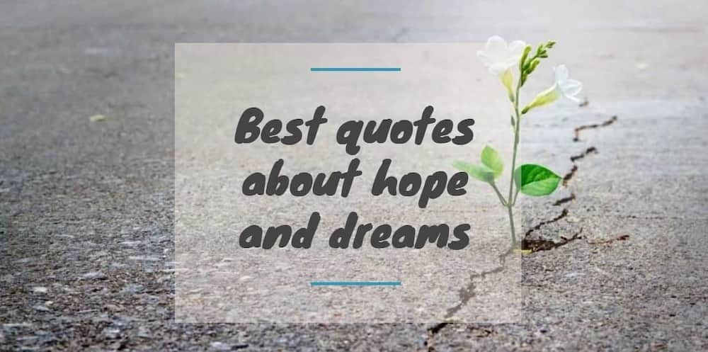 quotes about hope, hope quotes about life, quotes about hope of life