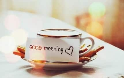 Best morning quotes for lovers and friends