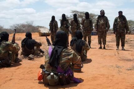 Nani anahitaji idhibati kuwa vikosi vya usalama vimelitikisa kundi la al-Shabaab?