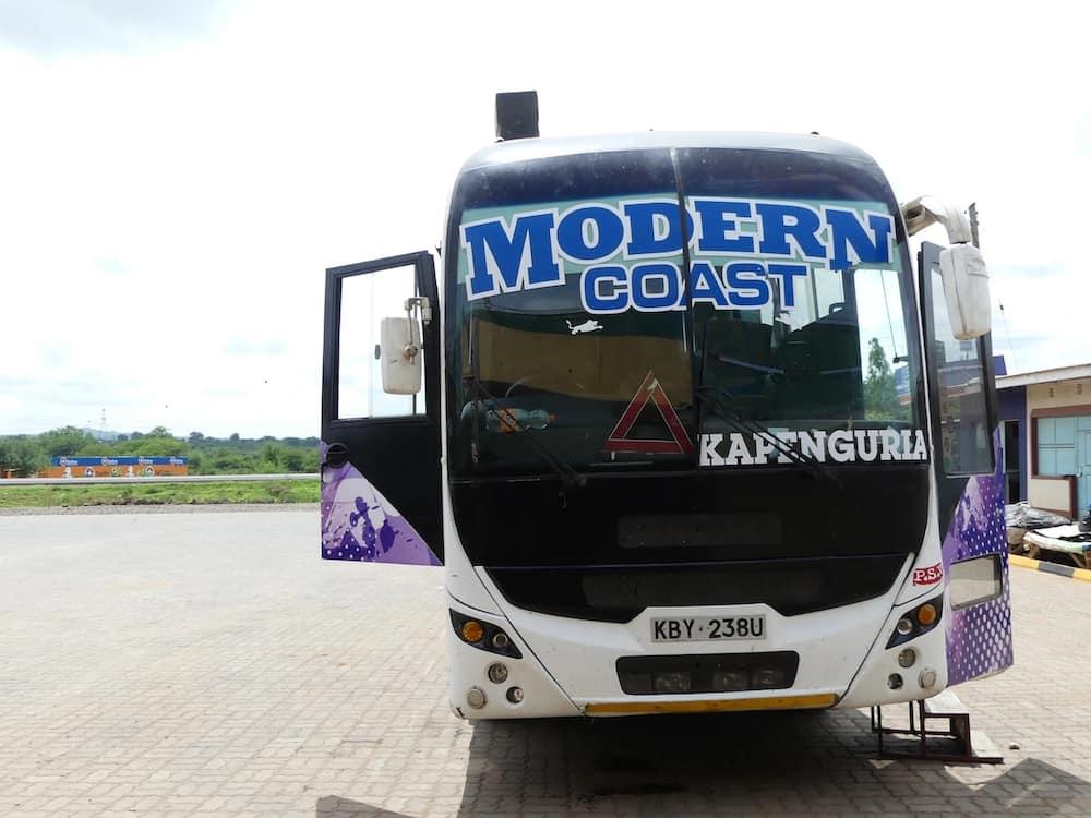 modern coast bus contacts, modern coast contacts, modern coast bus customer care contacts